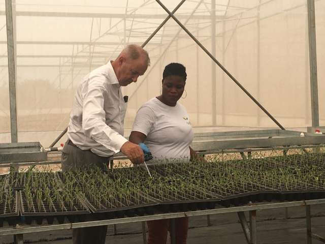 Ardhi Investment Group, Hortifresh hold Greenhouse Open Day at Akuse